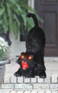 Scary Animated Black Cat Halloween Prop