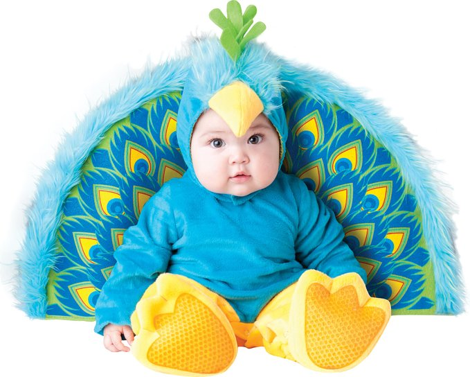 Adorable Infant Precious Peacock InCharacter Costume